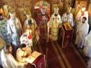 Sinod Mitropolitan